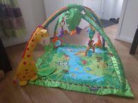 Fisher-Price rainforest playmat £25