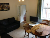 1 bedroom AVAILABLE NOW in modern 4 bedroom student house! £75 per week!