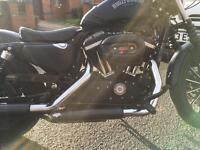 Harley Davidson iron n 883