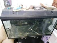 3ft aquarium