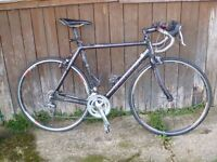 Focus Cayo 2008 carbon road bike. Size L. Ultegra equipped