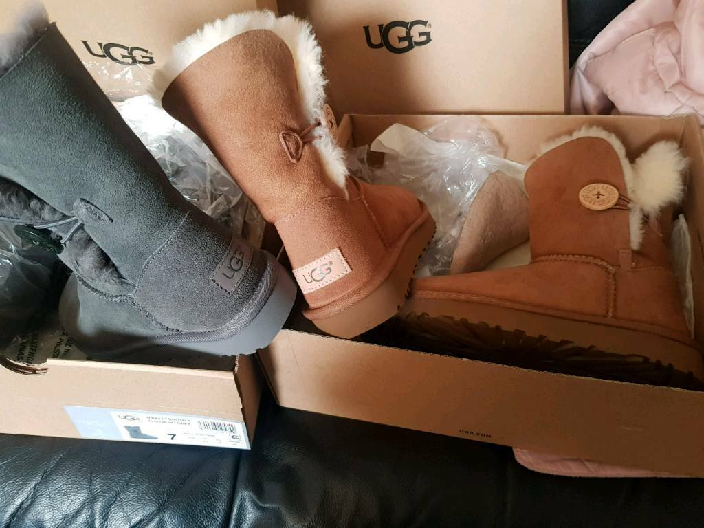 BRAND NEW Ugg boots size 6 uk   in Reading, Berkshire   Gumtree