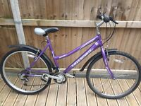 Free Spirit Mist Ladies Mountain Bike with Mudguards