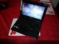 Toshiba NB500 Netbook