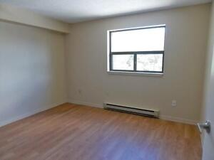 Lots of Closet Space! 2 Bedroom Collingwood Apartment for Rent