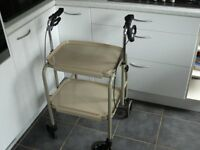 Height adjustable walker trolley with brakes