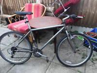 Specialised Rockhopper Vintage Bike