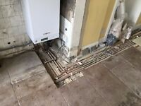 WANTED - Old Craigleith Quarry flagstones wanted to repair New Town flat floor
