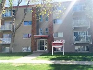 Lovinac Manor Apartments - One Bedroom Apartment for Rent Edmonton Edmonton Area image 1