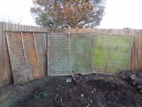 Overlap Fence Panels: 3 6ft x 6ft and 1 6ft x 4ft (£10 o.n.o)