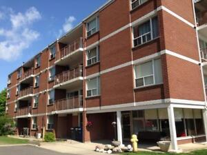 18 Spruce Street - Two Bedroom Apartment Apartment for Rent