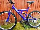 Large bike