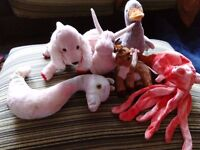 Bundle of 6 Assorted TY Beanie Toys