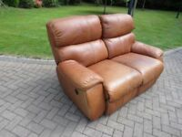 Buffalo Hide Electric Reclining Sofa (100% Leather)