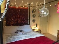 Lovely, spacious double room in the heart of Exeter