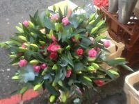 Experienced florist available;Early morning's/late afternoon's/evenings&sunday's