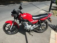 Yamaha YBR 125 2009 - 12 months MOT - Very Low Mileage