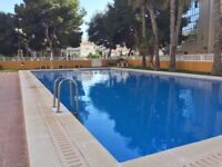 *AVAILABLE *Beachside Apartment in Punta Prima Spain, 40 mins from Alicante Only £299 per week.