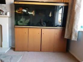 Boyu fish tank 5x2x2