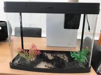 Love Fish Panorama 40ltr tank with accessories