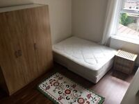 Beautiful, bright and spacious room in Forest Gate