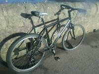 Marin Murwoods urban hybrid bike