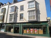 Reliable cleaner wanted for holiday let in Tenby