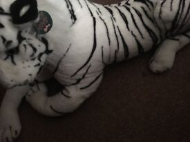 Big tiger teddy