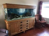 180cm solid oak complete fish tank set up