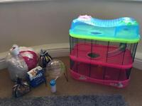 Hamster starting bundle