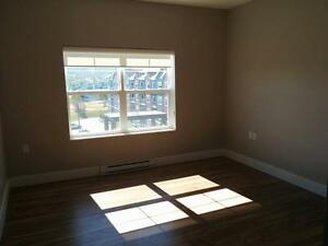 2 Bedroom apartment close to Bally Haly! St. John's Newfoundland image 8