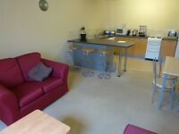 Professional/Student Luxury funished apartment very close to the city centre