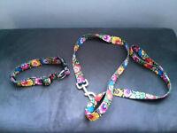 Dog collar and leash in folk colour.