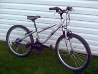 norco injector 18 speed youth mountain bike