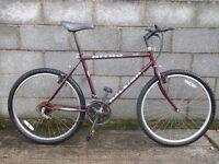 mens bike nitro raleigh 26''
