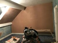 fully qualified plasterer nvq level 3. CSCS card competitive rates contact John