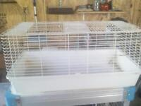 very large bunny cage