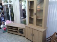 wall unit and tv unit