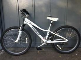 Specialized Hotrock 20 Bike Children