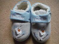 Frozen Sleepers
