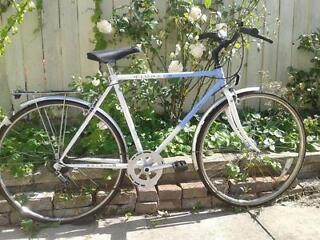 RALEIGH PIONEER 5 SPEED BIKE READY TO RIDE AWAY IDEAL SINGLESPEED/FIXIE CONVERSION