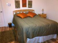 Large Furnished Private  ROOM available now   (non smoker)