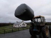 silage bales for sale