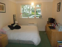 Large Double Bedded Room, in Super Refurbished Flat Share, in a Great & Central Cliff Top Location.