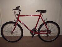 "Raleigh Cyclone 23"" Mountain Bike"