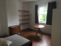 Spacious Double Room in Ealing (W5)