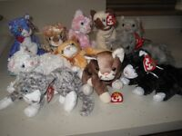 Ty Beanie Babies - cats