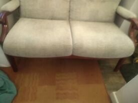 Light Green Sofa for sale