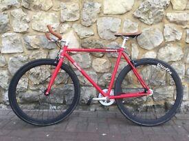 Quella Bike -Single Speed - Fixie
