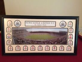 Newcastle United St James Park Picture